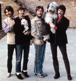 Please note that Ringo is standing on his tip-toes for this photo.